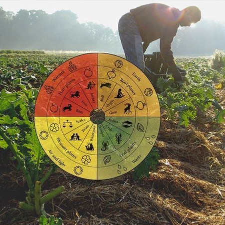 ¿Sabias que no estás tú solo cultivando tu huerto?